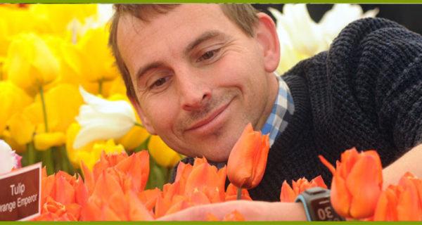 harrogate-flower-show-2
